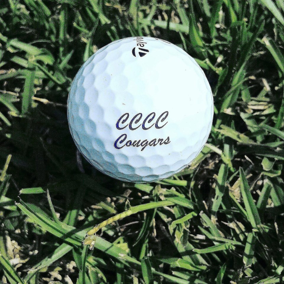 Read the full story, Eighth CCCC Foundation Harnett Golf Classic a winner